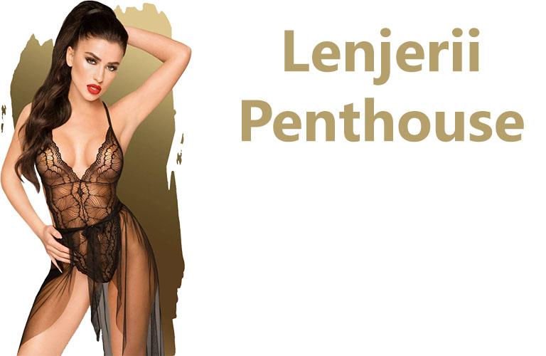 Lenjerii Penthouse
